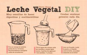 como-hacer-leches-vegetales-4