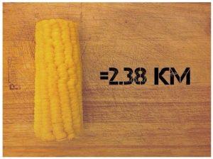 kilometros-por-comida-6